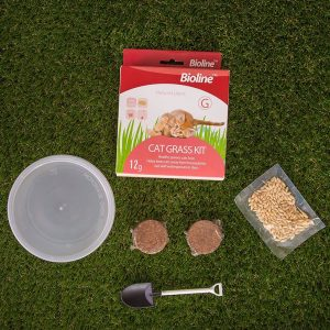 bioline cat grass kit